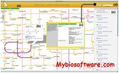 Pathwayprojector