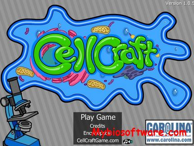 CellCraft